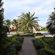 Tropical Landscape by JC Enterprise Services, Inc.