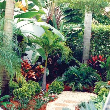 Tropical Hideaway in Boca Raton