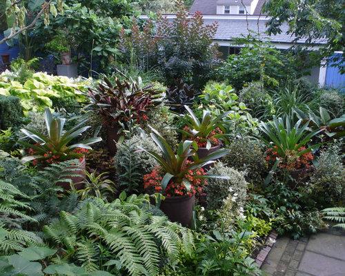 Tropical Garden Houzz