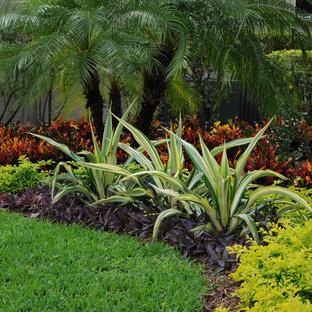 Foto på en tropisk trädgård framför huset