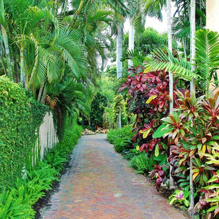 Design ideas for a tropical landscaping in Miami.
