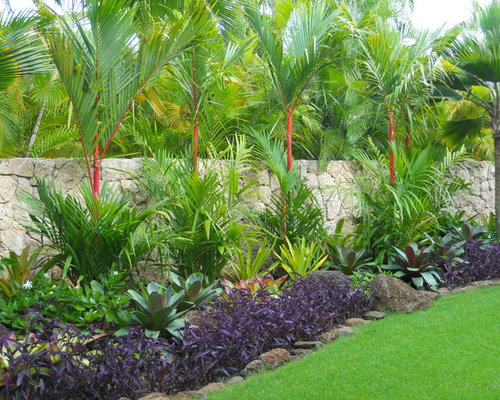 Tropical landscape houzz for Tropical landscape