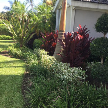 Tropical landscape spaces, All around the house.