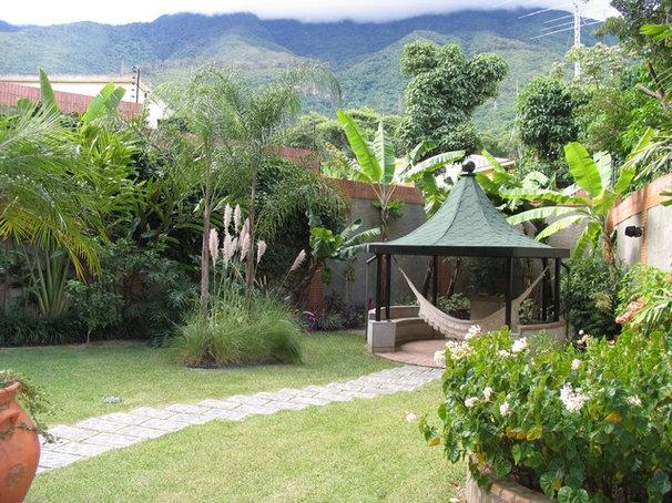 Tropical Landscape by Susana Merenfeld de Weisleder