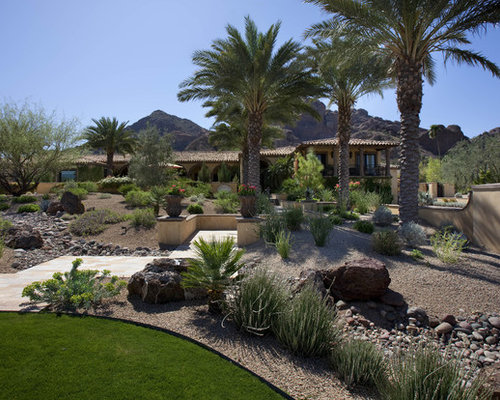 Houzz Backyard Desert Landscaping Design Ideas Remodel Pictures