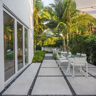 マイアミの小さいモダンスタイルのおしゃれな庭 (日向、コンクリート敷き) の写真
