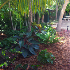 Tropical Landscape by Gardening Angel
