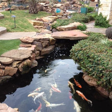 Tropical Landscape by Pool Environments, Inc.