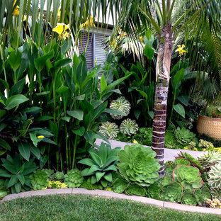 Esempio di un giardino tropicale