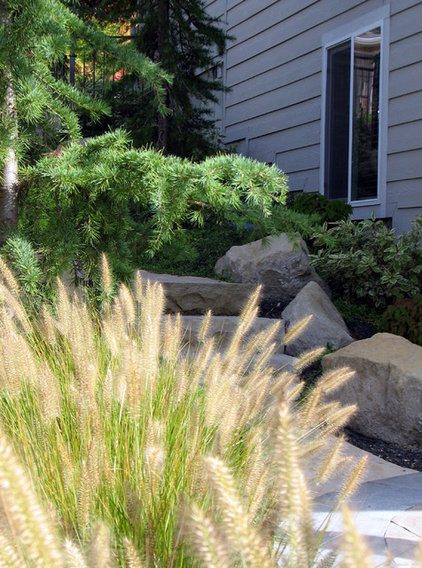 Great design plant lively fountain grass thrives just for Fountain grass landscaping ideas