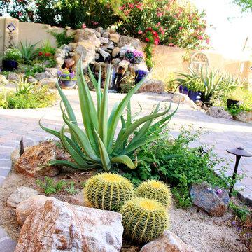 Tucson Oasis