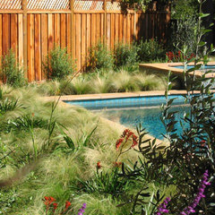 mediterranean landscape by Shades Of Green Landscape Architecture