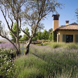 Inspiration for a mediterranean backyard landscaping in San Francisco.