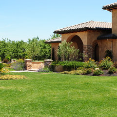 mediterranean landscape by Spring Creek Watergardens and Landscape