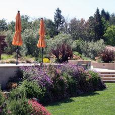 Mediterranean Landscape by Jolee Horne Landscape Design