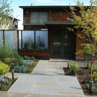 Foto di un grande giardino xeriscape moderno esposto a mezz'ombra davanti casa con un ingresso o sentiero e pavimentazioni in cemento