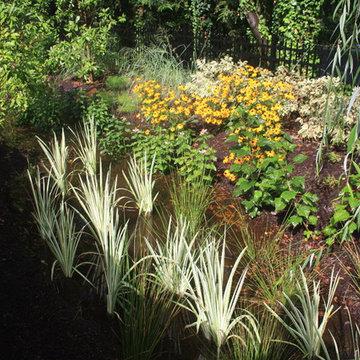 u2014 ALE: Pembrooke Estate Rain Garden