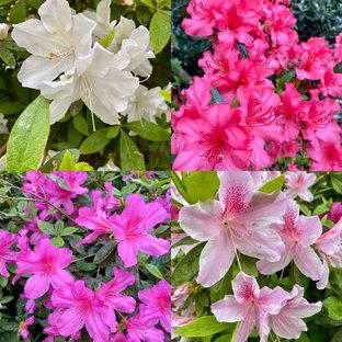 Exemple d'un jardin craftsman de taille moyenne et l'été avec un massif de fleurs, une exposition partiellement ombragée et des pavés en pierre naturelle.