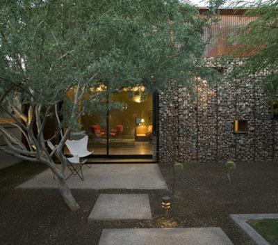Contemporary Landscape by Urban Earth Design