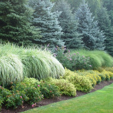 Traditional Landscape by Landscape Design Associates of Westchester, Inc.