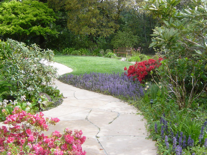 Traditional Landscape by Pamela Bateman Garden Design