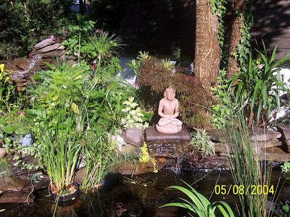 Tropical Landscape by Vedic Gardens & Nursery, LLC