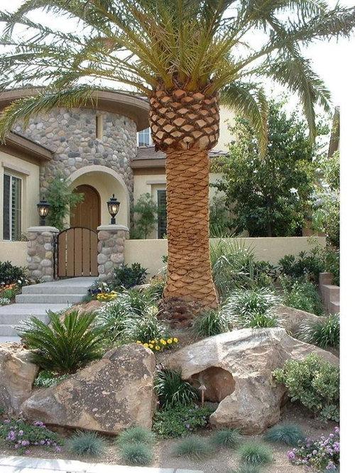 Tropical Las Vegas Landscape Ideas Designs Remodels Amp Photos