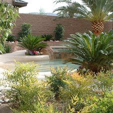 Tropical Landscape by Sage Design Studios, Inc.