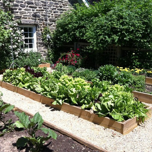 This is an example of a traditional vegetable garden landscape in Philadelphia.