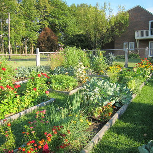 Inspiration for a traditional raised garden bed in Burlington.