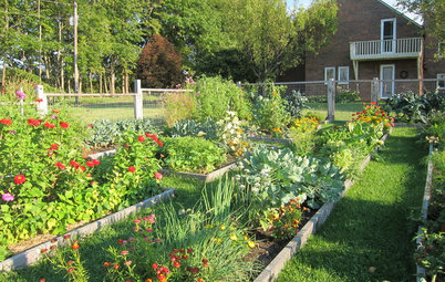 How to Plan Your Edible Garden
