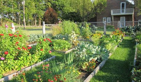 How to Plan Your Edible Garden
