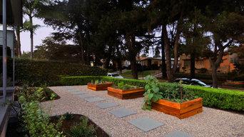 Vegetable garden planter boxes & Drought-tolerant landscape