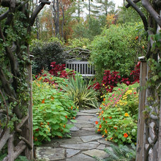 Traditional Landscape by Bloom Landscape Design and Fine Gardening Service
