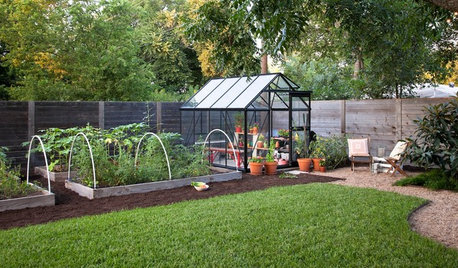 10 Things to Include in Your Greenhouse