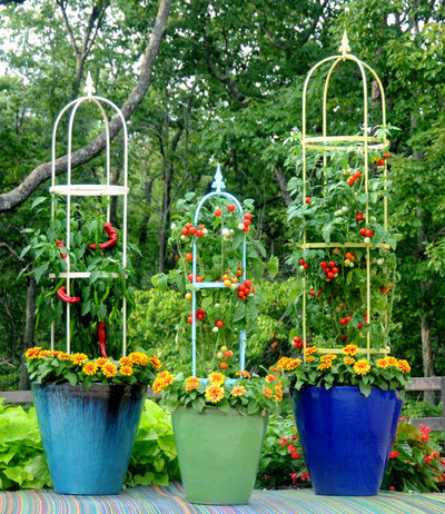 Cherry tomato plant does double duty as a design element Tomato garden design