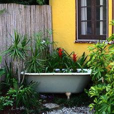 Eclectic Landscape by Melissa Mascara Design