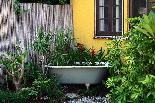 Eclectic Garden by Melissa Mascara Design