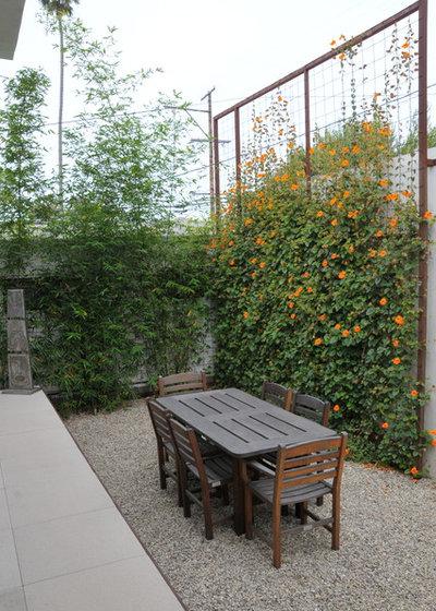 Traditional Landscape by SB Garden Design