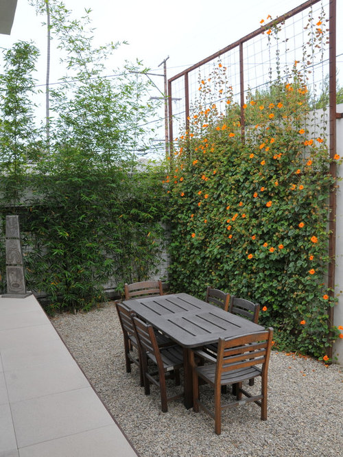 Trellis Design Ideas it all starts with good trellis plans youtube Wall Trellis Design Home Design Photos