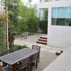 Modern Landscape by SB Garden Design
