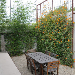 Inspiration for a modern backyard landscaping in Los Angeles.