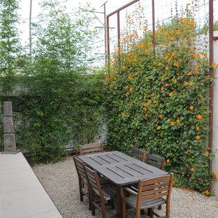 Moderner Garten hinter dem Haus in Los Angeles