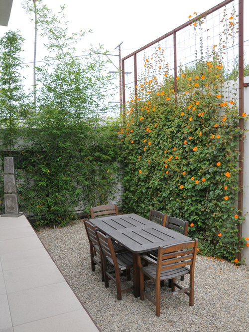 hop trellis photos - Trellis Design Ideas