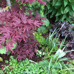 Cette image montre un petit jardin arrière l'été avec une exposition partiellement ombragée et des pavés en béton.