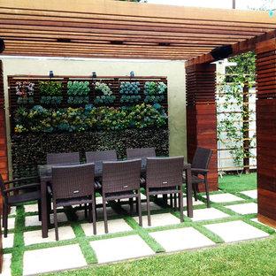 ロサンゼルスの中サイズの、春のモダンスタイルのおしゃれな裏庭 (ゼリスケープ、壁面緑化、日向、コンクリート敷き) の写真