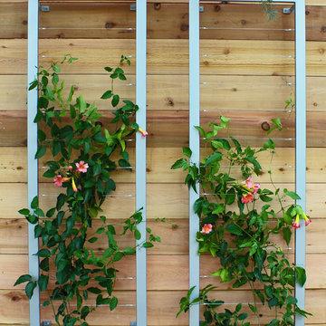 Vertical garden with Ina Wall Trellis by Terra Trellis