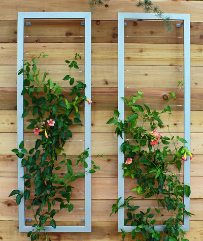 8 Trellis Ideas to Give You Garden Envy