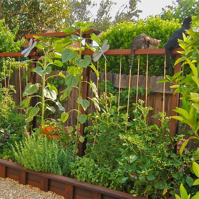 This is an example of a small rustic full sun backyard gravel vegetable garden landscape in San Francisco for summer.