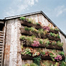 Landscape Vertical Gardening Ideas - How To Make a Vertical Garden - Country Living